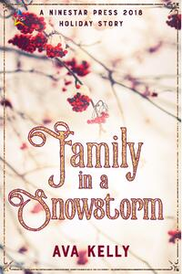 Cover of Family in a Snowstorm by Ava Kelly