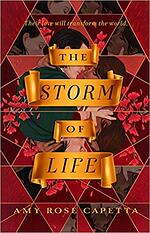 the-storm-of-life